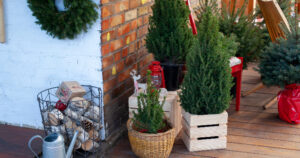Decorating Outdoor Winter Containers